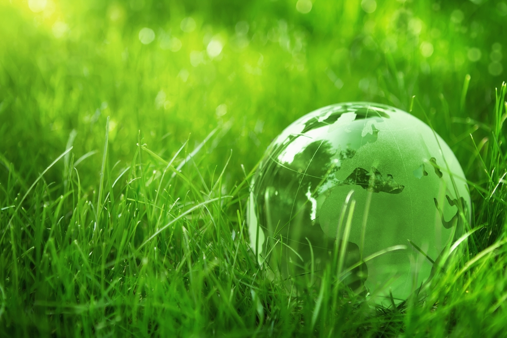 why go green pool operation management