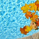 national pool operator certification